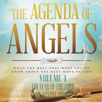 Agenda of Angels Volume 4