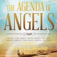 Agenda of Angles Volume 7