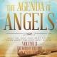 Agenda of Angels Volume 8